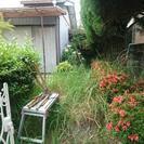 ■福岡市 【本】草むしり・草取り・草抜き致します