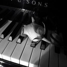 Piano Lessons.Jazz,Popular,Clas...