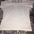 レディースTシャツフリーサイズ