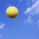 テニス会☆初心者、スポーツ苦手な方大歓迎☺️☘️