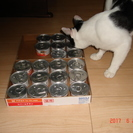 猫用缶詰あげます