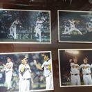 2008年 阪神タイガース ポストカード 全9枚