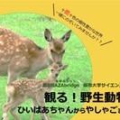 無料イベント「観る!野生動物 ひいばあちゃんから やしゃごまで」第...
