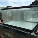 ガラス水槽 中古品 セット
