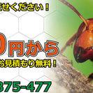 埼玉県のスズメバチ・アシナガバチ専門の駆除業者はハチ駆除チャンプ...