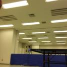 卓球サークルメンバー募集(本町)