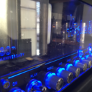 HUGHES&KETTNER Tube Meister 36 H...