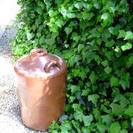 昔の醤油甕