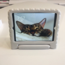 Mac iPad 子供用ケース付き 中古美品