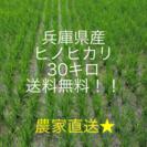 31年度予約分完売しました!兵庫県産 ヒノヒカリ 30キロ