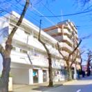 【環境抜群さくら通り沿い】松戸・常盤平駅徒歩11分 五香11分リフ...