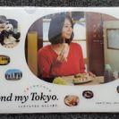 【未使用品】堀北真希A4クリアファイル東京メトロ