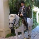 馬の世話、馬のイベント出張等
