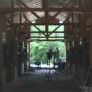馬のお世話に挑戦!おしごと体験やってみよう~ − 岐阜県