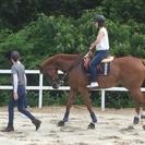 馬のお世話に挑戦!おしごと体験やってみよう~ - 教室・スクール