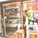 ドッグカフェ OPEN!!の画像