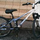 24インチ 子供用 マウンテンバイク