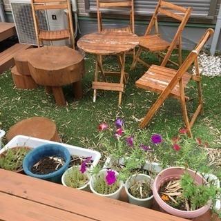ガーデンテーブルとイス