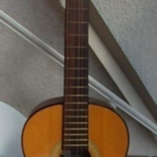pirles g350 アコースティックギター
