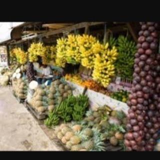一週間より!短期留学をフィリピンの避暑地で!