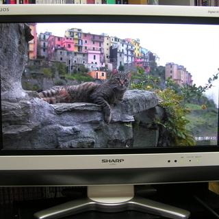 ◇シャープ20V型テレビ LC-20D50 デジタルハイビジョン□...