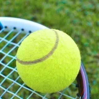 硬式テニスメンバー募集