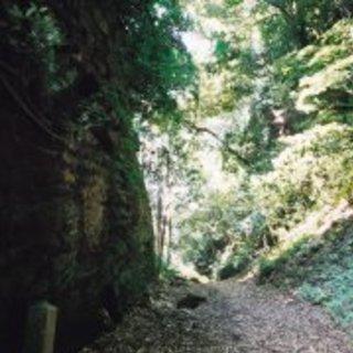 10月21日(土)歴史散歩 朝夷奈切通から十二所・浄明寺を歩いてみよう