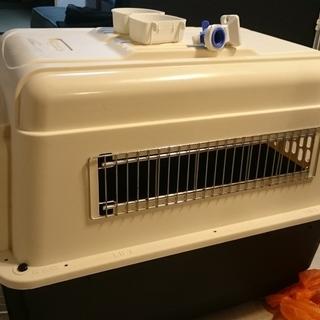 犬のクレート/キャリー(国際線搭乗用)バリケンネル