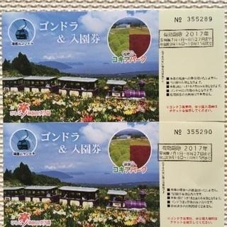 【値下げ☆早い者勝ち】びわ湖 箱館山ゆり園 ゴンドラ&入場券 2枚