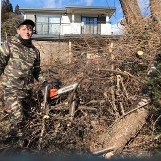 草刈り 木の伐採 引っ越し作業