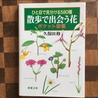 散歩で出会う花ポケット図鑑 ひと目で見分ける580種