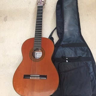 KODAIRA楽器 クラシックギター