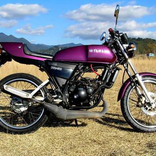 RZ50 RA02J メタリックパープル!  自賠責1年付き 栃木県