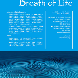クラニオセイクラル・バイオダイナミクスの世界 - Breath o...