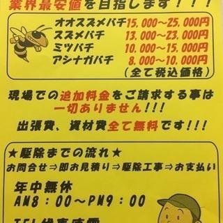 スズメバチ🐝アシナガバチ🐝蜂の巣駆除やります!