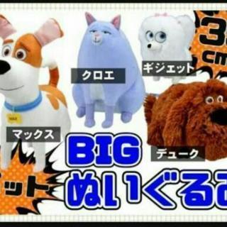 ペット ギジェット クロエ ★ 35 ㌢ BIG スペシャル ぬ...