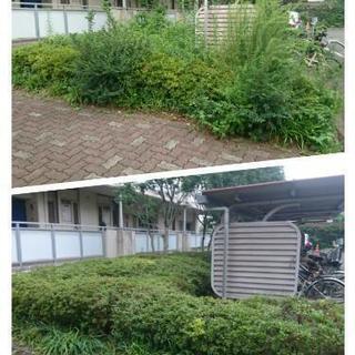 【庭師】【Gardener】最低価格¥1000~で本文の料金内容をご確認ください(Correspondence in English)           − 東京都