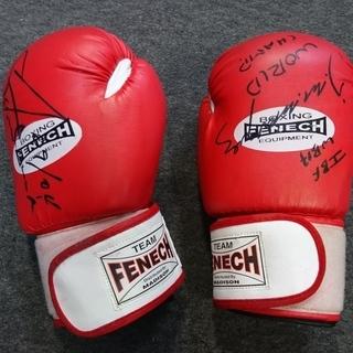 ボクシング グローブ 12オンス TEAM FENECH オース...