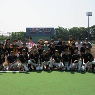 江戸川球場ナイターで野球紅白戦やります!