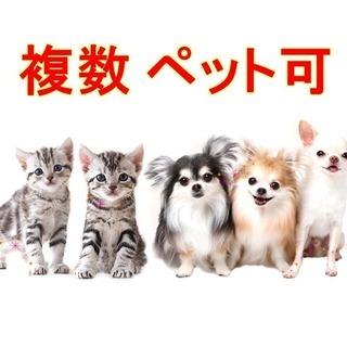 米沢市でペット可物件をお探しなら!2DK最安値!複数OKです。