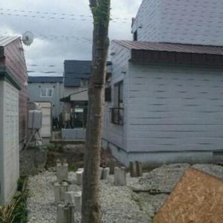 薪やログハウスに!庭木