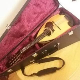 マンドリンギター