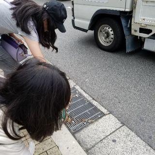 9/23(土)ゴミ拾いします!