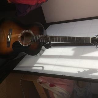 アコースティックギター 🎸 初心者向け 🔰