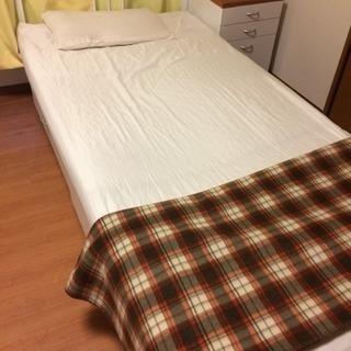 【交渉中】ニトリのベッド 0円でお譲りします