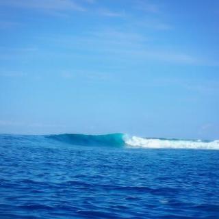 サーフィン教えます。