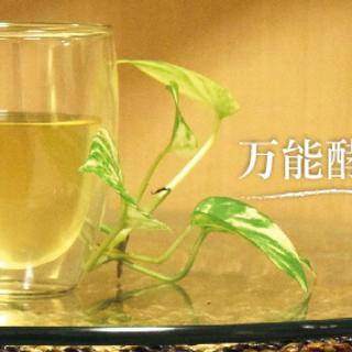 玄米・黒糖・塩・水だけでつくる万能酵母液作り方講習会 午前~その3...