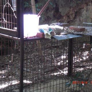 有害鳥獣被害対策、イノシシ駆除の為、農地、山林の設置場所を…