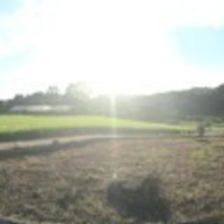 畑、土地、駐車場 貸します。 - 土地販売/土地売買