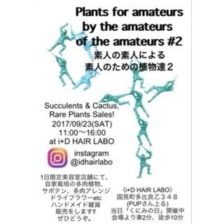 9/23(土祝)雲仙市国見町多肉植物販売会🌵
